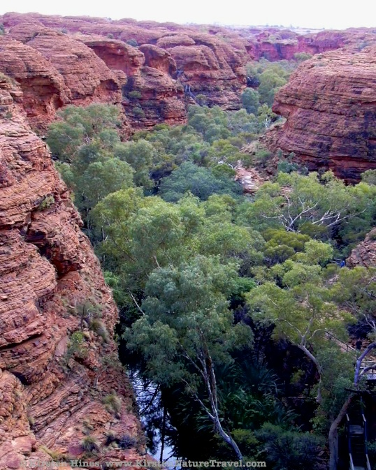 King's Canyon