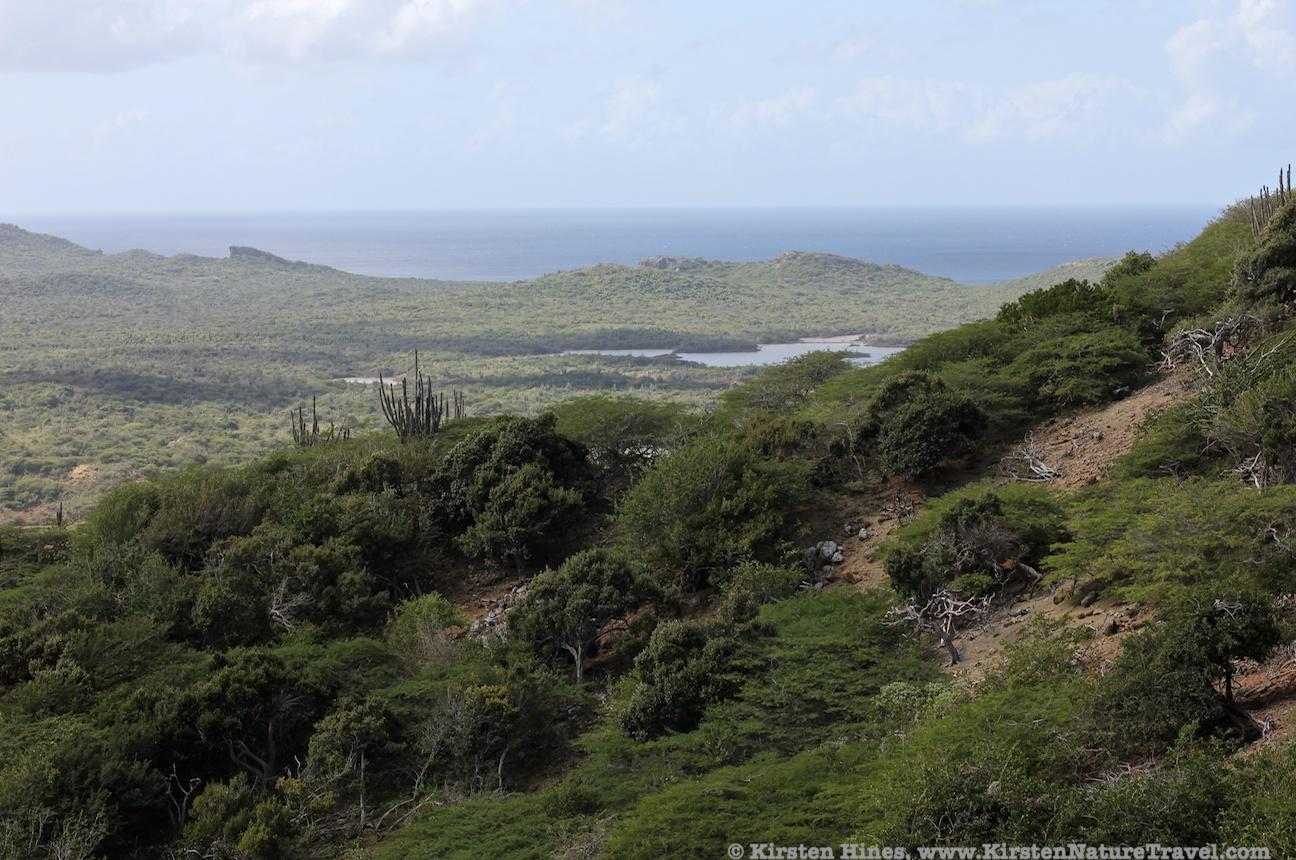 View from Brandaris - Bonaire's highest peak