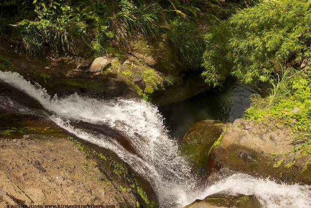 Concord Falls