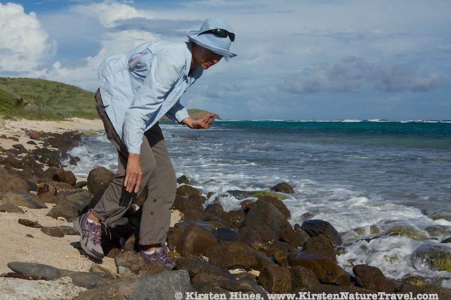 Jack Bay beach combing