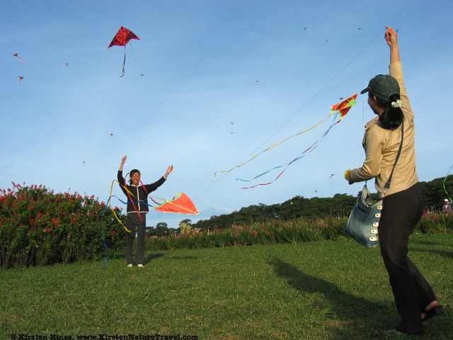 Kite flying in Dalat