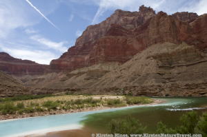 Confluence of the Little Colorado River