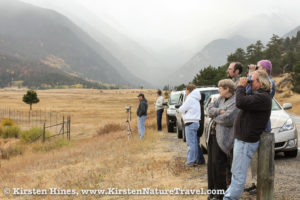 Watching for elk in Rocky Mountain National Park.